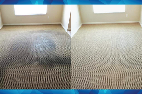 Carpet cleaning work performed by Quality Carpet & Tile Services.