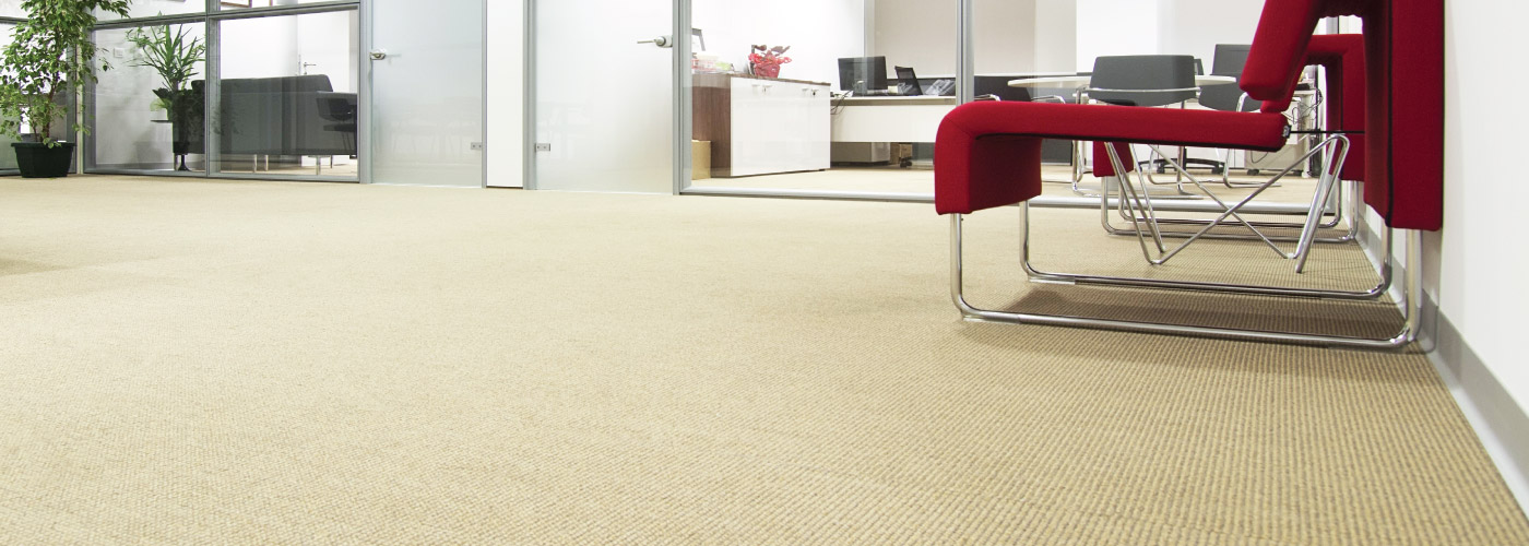 Carpet Care McAllen